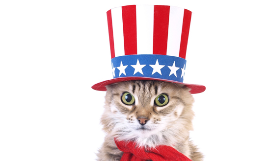 Hi Antoinette Friends, Antoinette will be closed tomorrow, July 4th for Independence Day! Have a safe & Happy 4th of July! XO