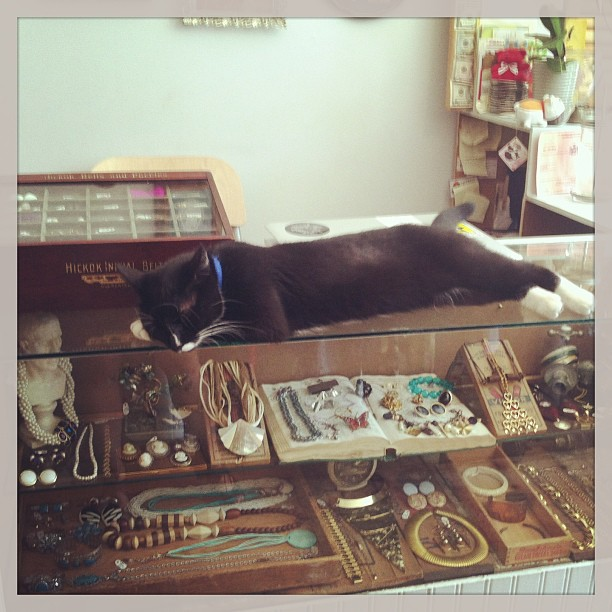 It might be too hot to try on clothes but not #vintage jewelry…this guy can help you find something special in the case! (at Antoinette)