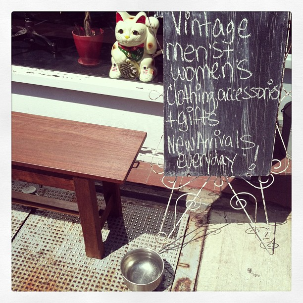 Hey Shop Owners, Don't forget to change your water bowls every ½ hour…it's a hot one & we need to keep our furry friends hydrated! 🐶🐱🐦🐤🐷 (at Antoinette)