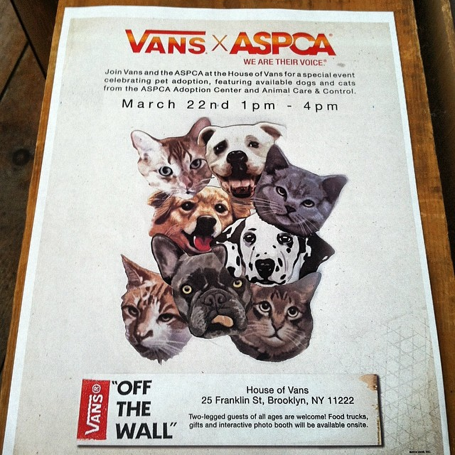 @vans X @aspca Pet Adoption Event Tomorrow, Saturday March 22nd 1-4pm at House of Vans, (Greenpoint Brooklyn) ! 🐱🐶 Kittens, Doggies, Skater boys & Food trucks 👌#vans #houseofvans #aspca #petadoption #brooklyn #greenpoint #antoinettevintage #adoptdontshop (at Antoinette)