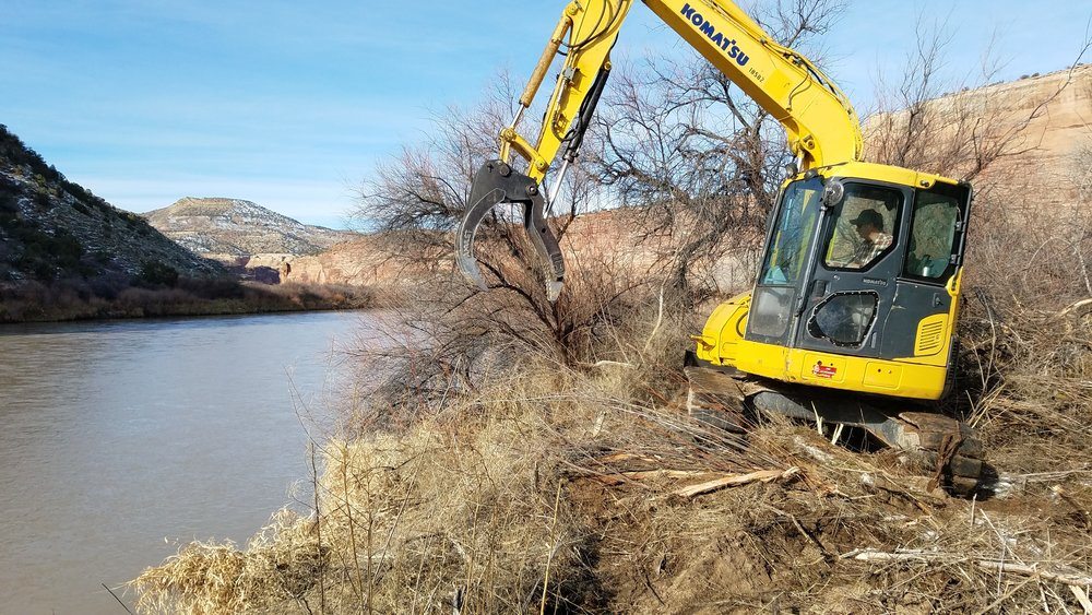 Stan Young ripping Tamarisk up by its roots with his 17,000 pound excavator.