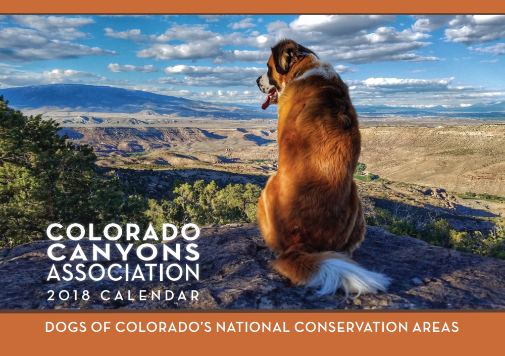 Calendars have recently dropped to $10.00 for in store purchases! Your purchase supports CCA's work stewarding the dog-friendly public lands (National Conservation Areas) so near and dear to our communities.
