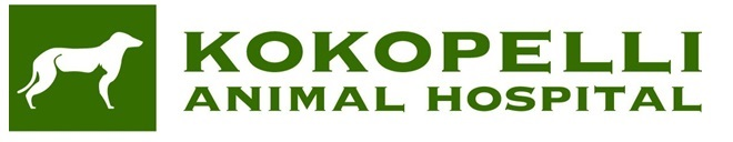 Kokopelli Animal Hospital jpeg.jpg