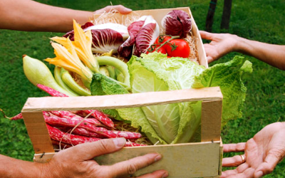 Giving is the best part of what we do. Click to find out how we give fresh produce away!