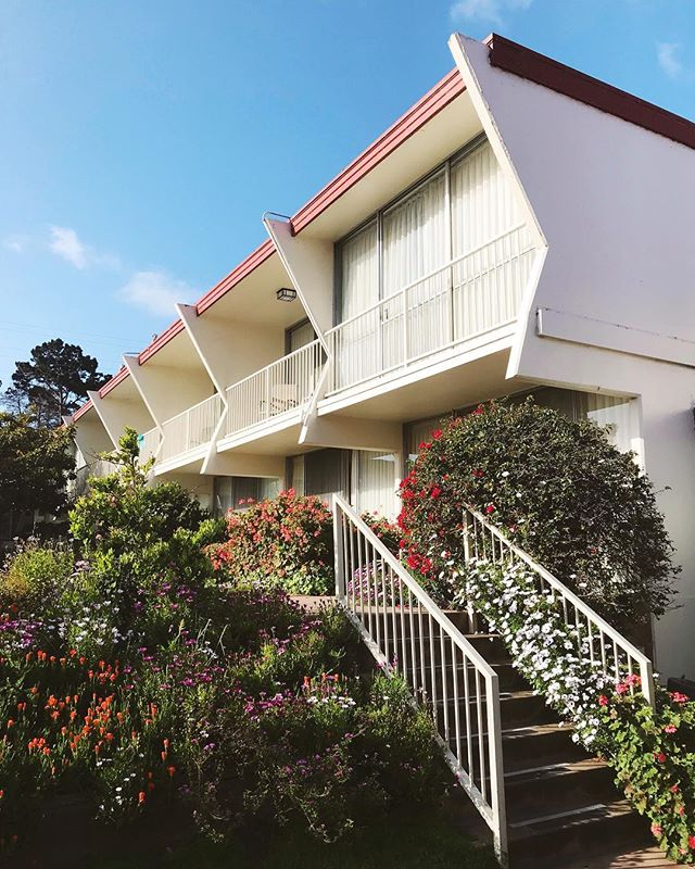 Mid-week Mid-Century inspiration with a flashback to our recent stay in Monterey.  Classic motel charm in bloom! . . . #architecture #midcentury #midcenturymodern #roadtrip #travel #monterey #californialiving #motel #spring #ontheroad #monterey