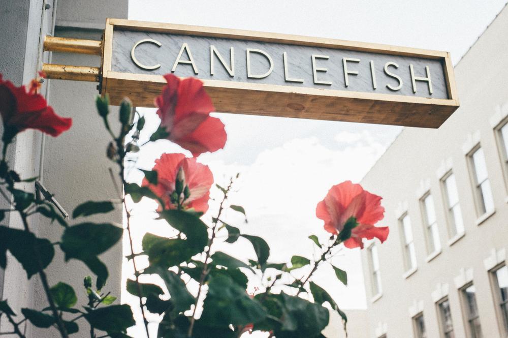 Candelfish Charleston Shopping