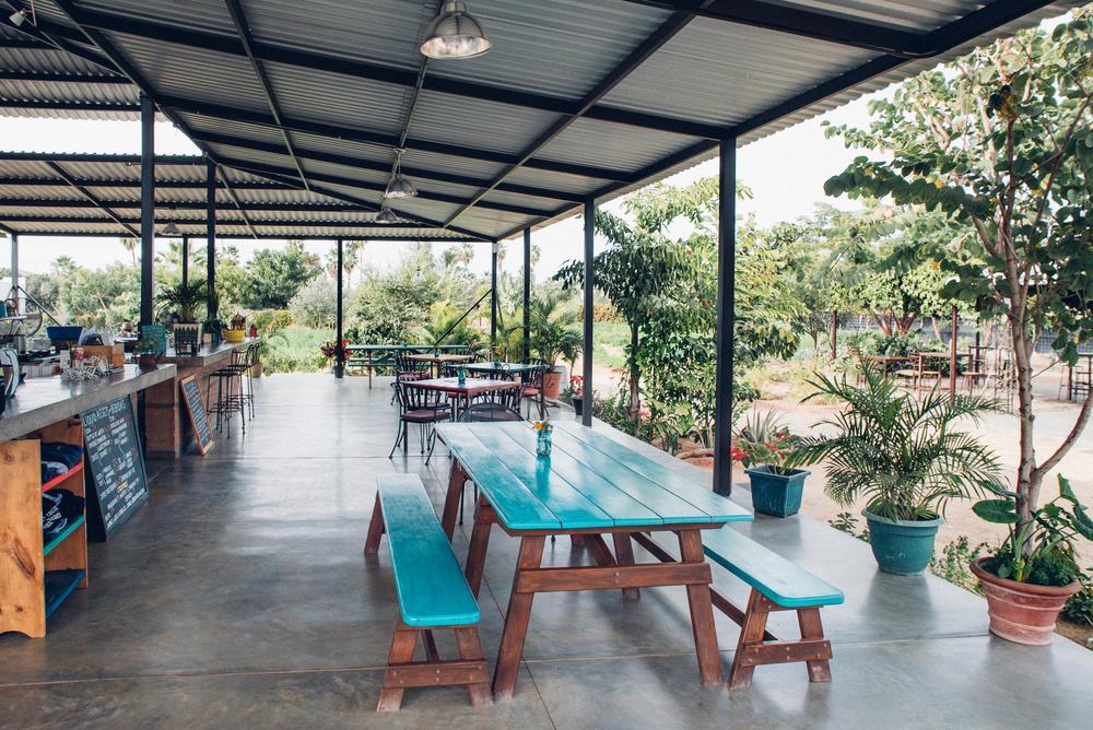 Hierbabuena Todos Santos Farm Restaurant