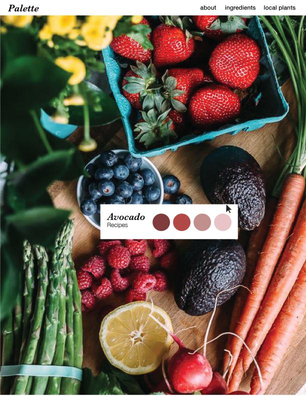 Natural Dyes Source Homeoage