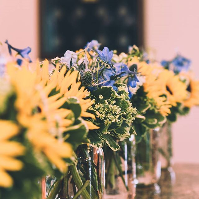 What would a Texas country wedding be without sunflowers? 🌻 . . . . #texaswedding #sunflowers #countrywedding #messinahof #weddingphotography #flowers #decor #kyletexasweddingphotographer #texasweddingphotographer