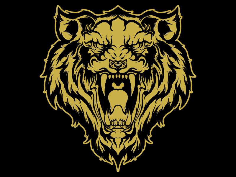Tigre-Dribble.jpg