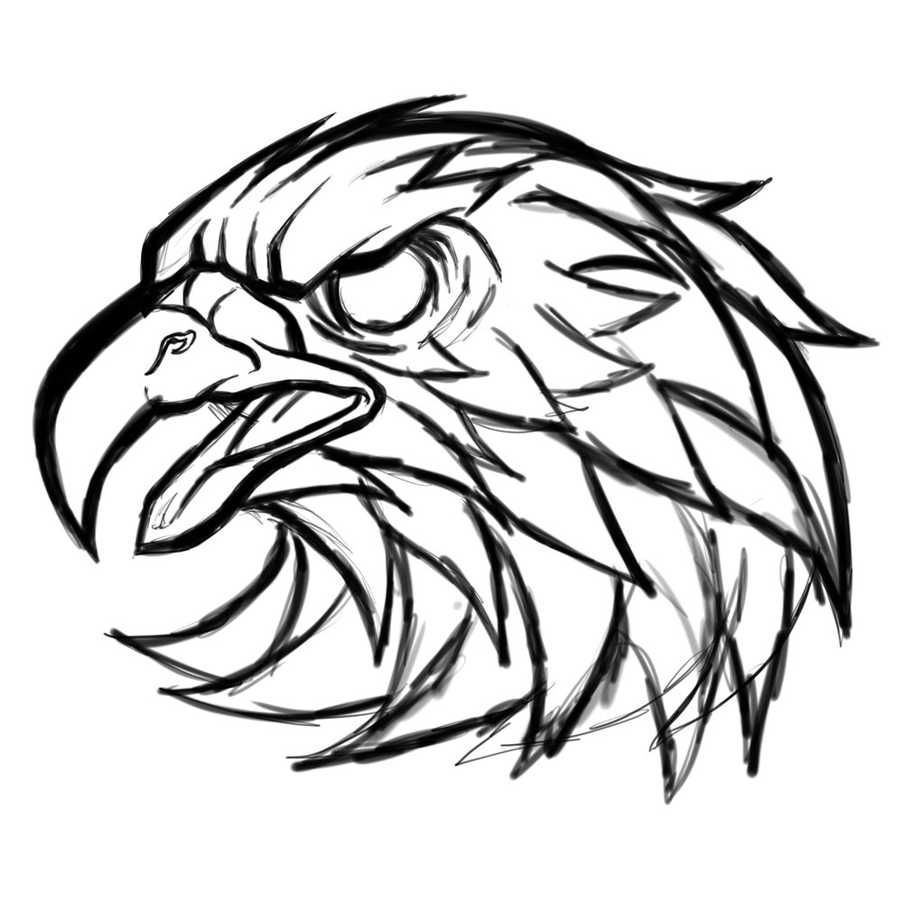 eagle-eagles-sketch-illustration.jpg