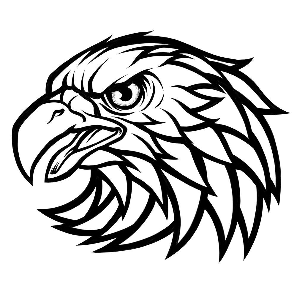 eagle-eagles-art-illustration-ink-procreate.JPG