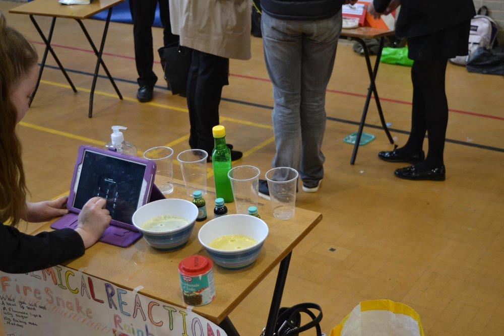 Science Fair Day 2 (24).jpg