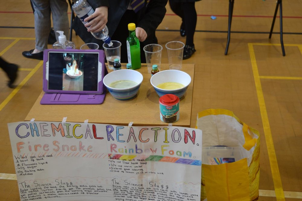 Science Fair Day 2 (58).jpg