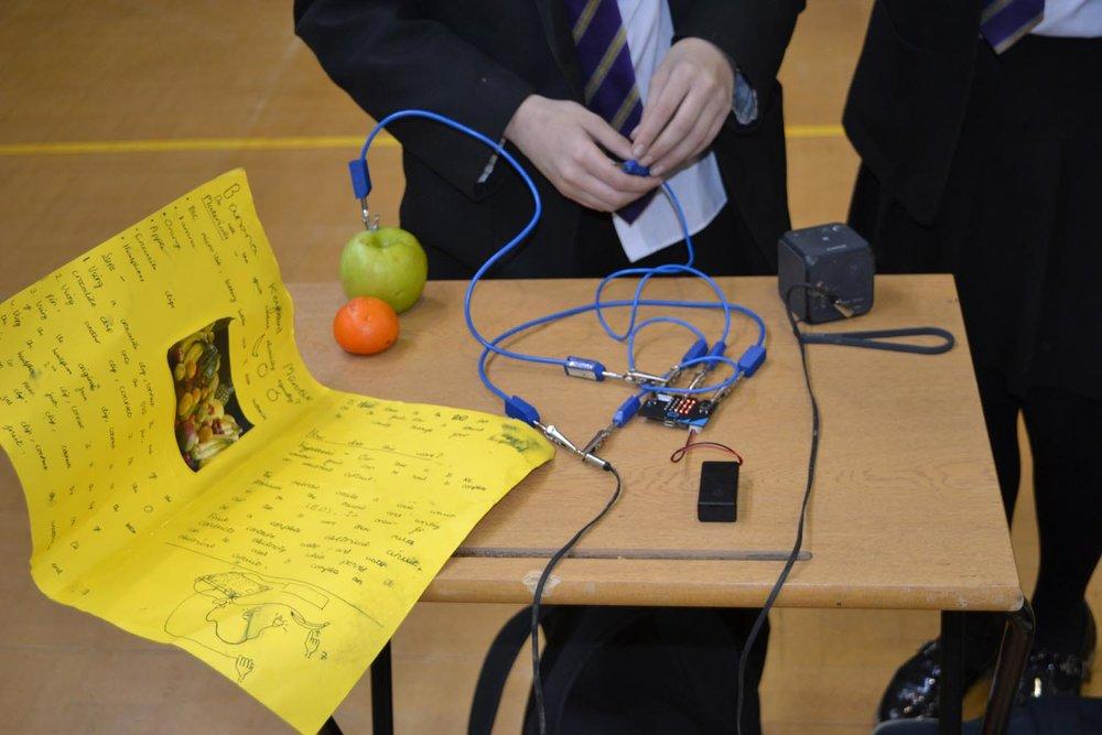 Science Fair Day 2 (63).jpg