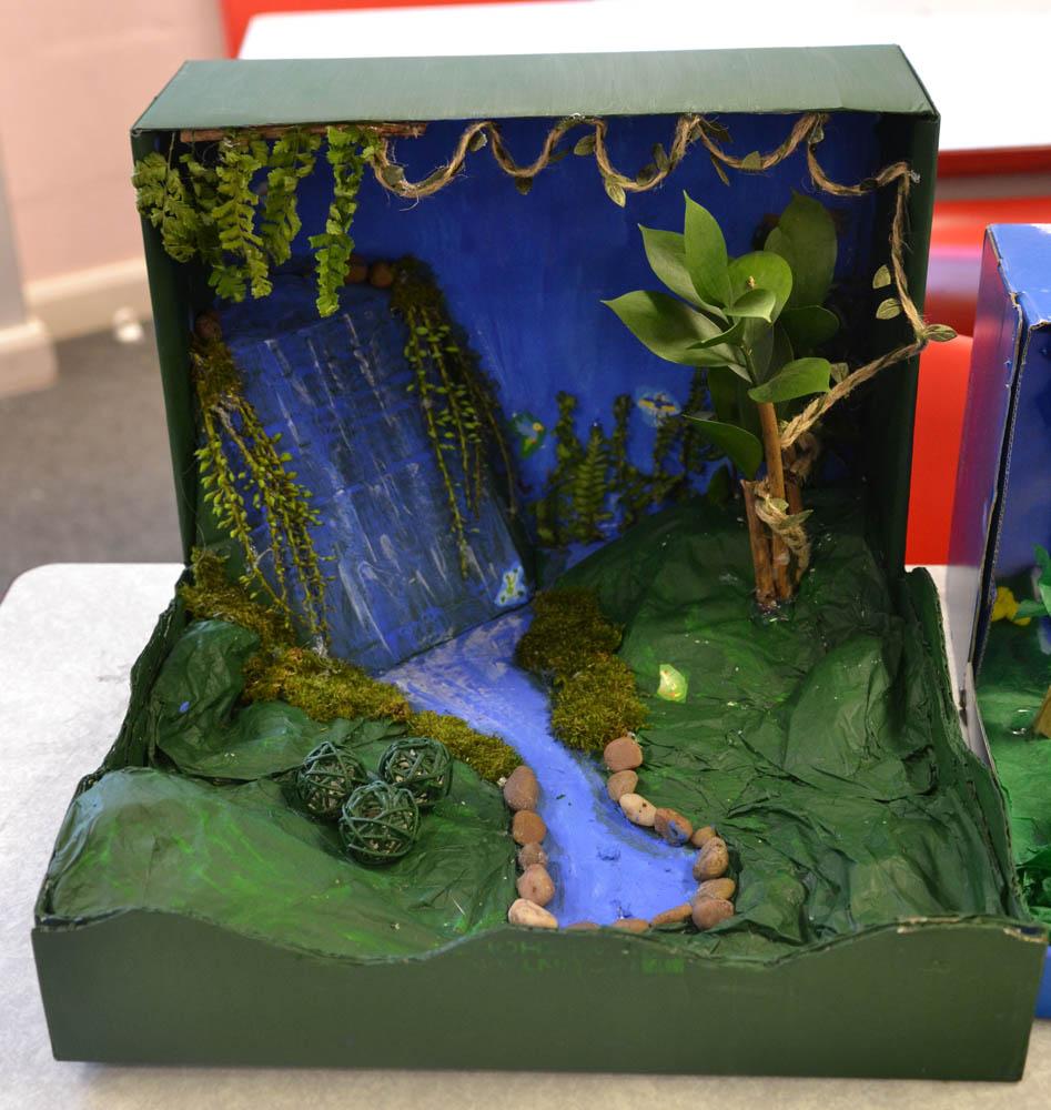 24 Rainforest in a Box-3.jpg