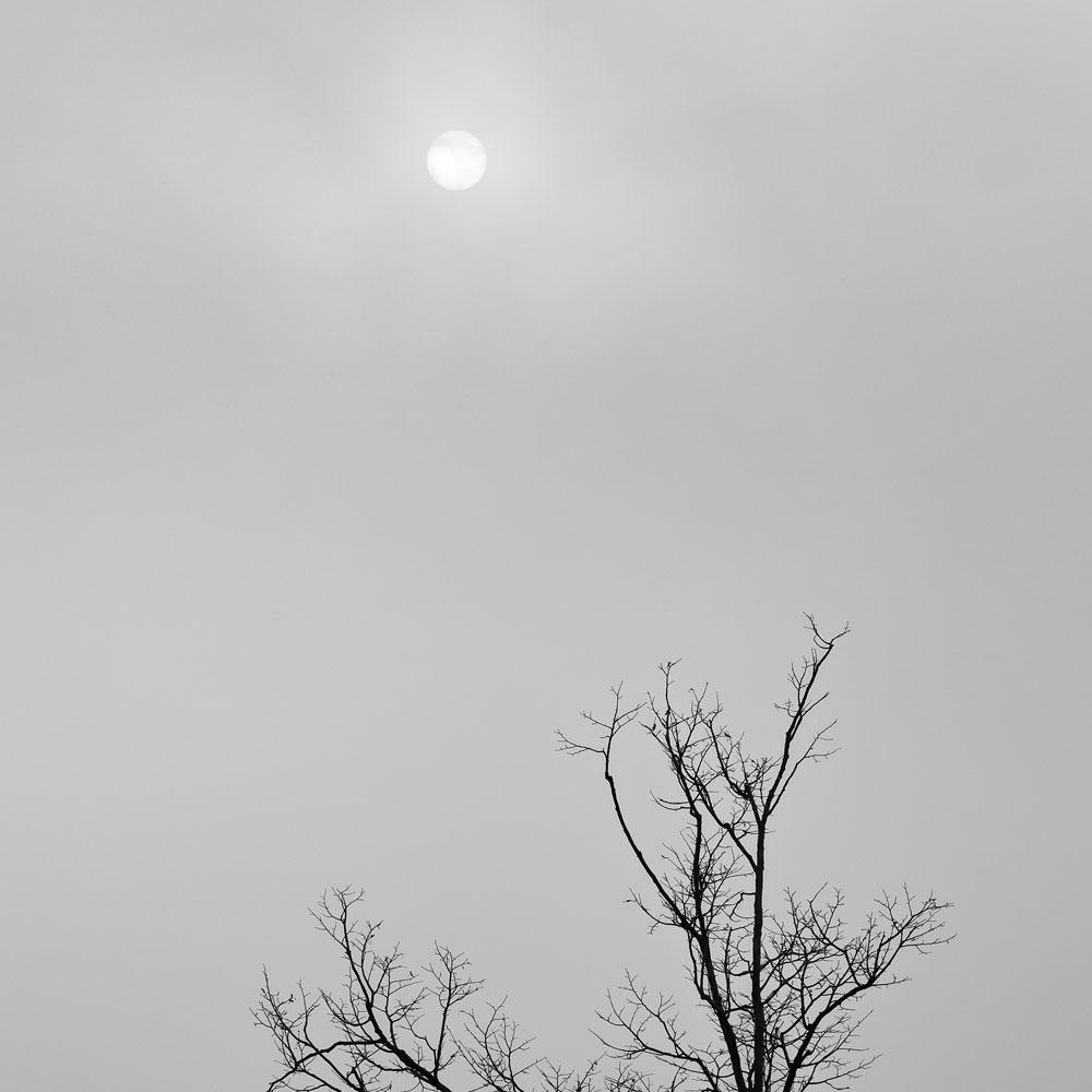 clearing fog, Stockbridge Bowl