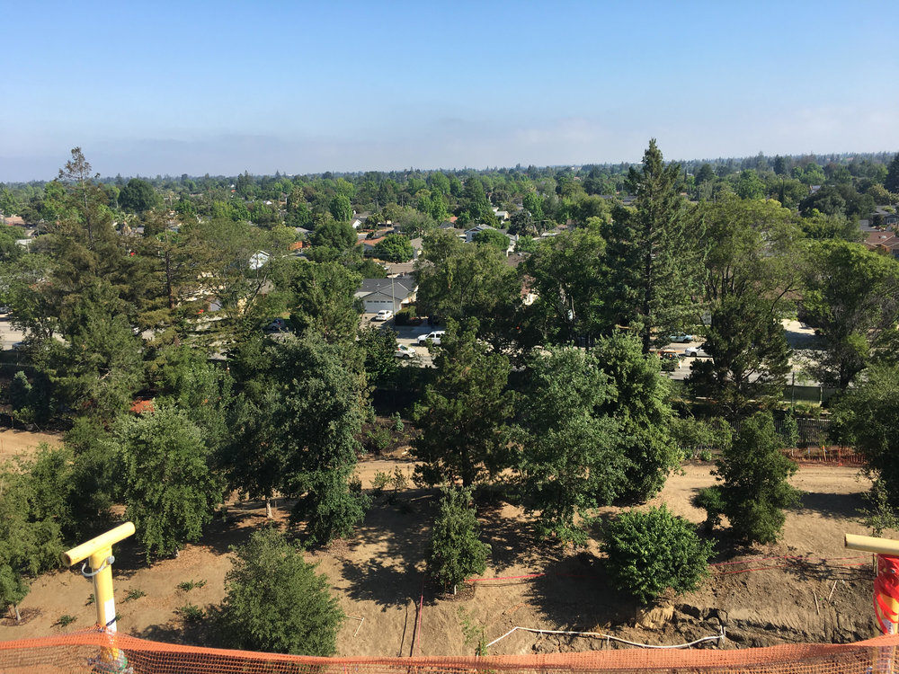 Apple Campus from the top 6.jpg