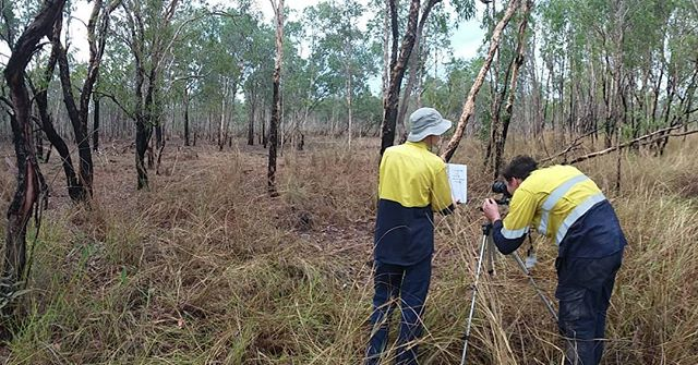 Want to see how our 3d photo points can be used to calculate woody biomass and how you can integrate it with our other soil and vegetation data? Come to our open day at Adelaide university's Waite Campus on the 1st of November. (See previous post for deets). #soilscience #basalarea #research #savannah #fireecology #invertebrates #pointintercepttransect #researchinfrastructure #wehaveyourdata #tern_au #freelyavailsbledata #soilandveg #soilbulkdensity #vegetationstructure #kakadunationalpark #plantgenomics #plantgenetics #plantisotopes #leafareaindex #herbariumsamples