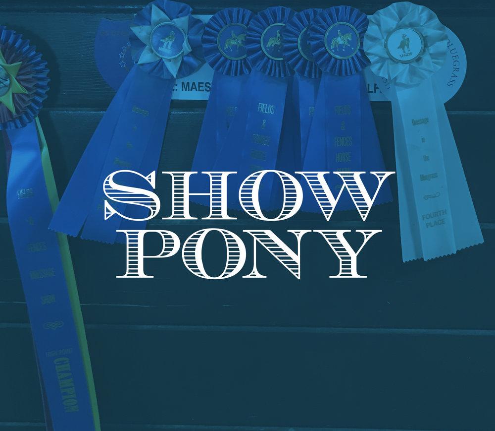ShowPony2x3.jpg