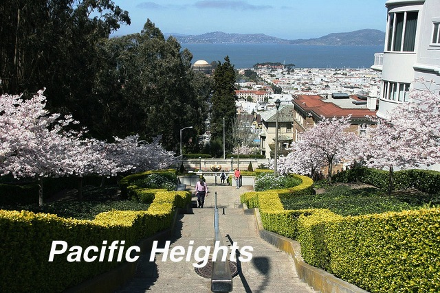 Pacific Heights.jpg