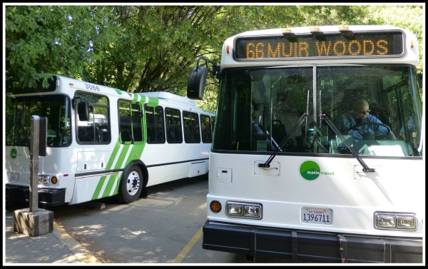 Muir-Woods-Shuttle.jpg