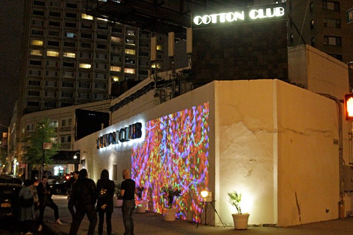 cottonclub_06.jpg