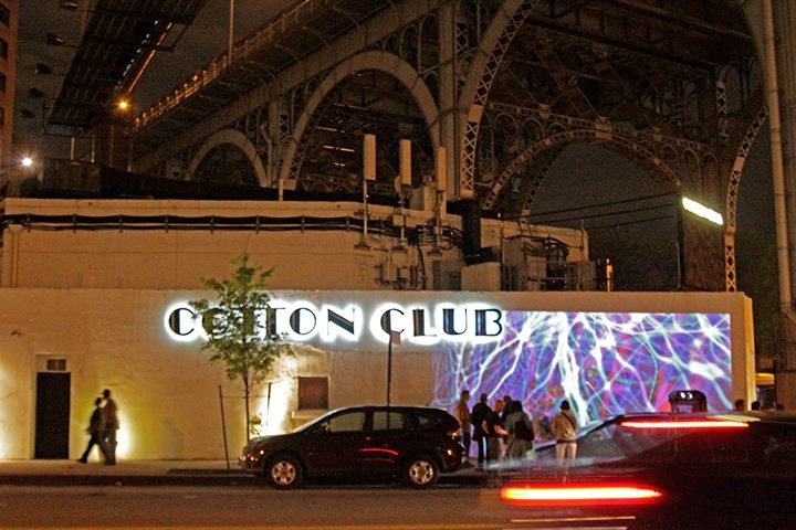 cottonclub_07.jpg