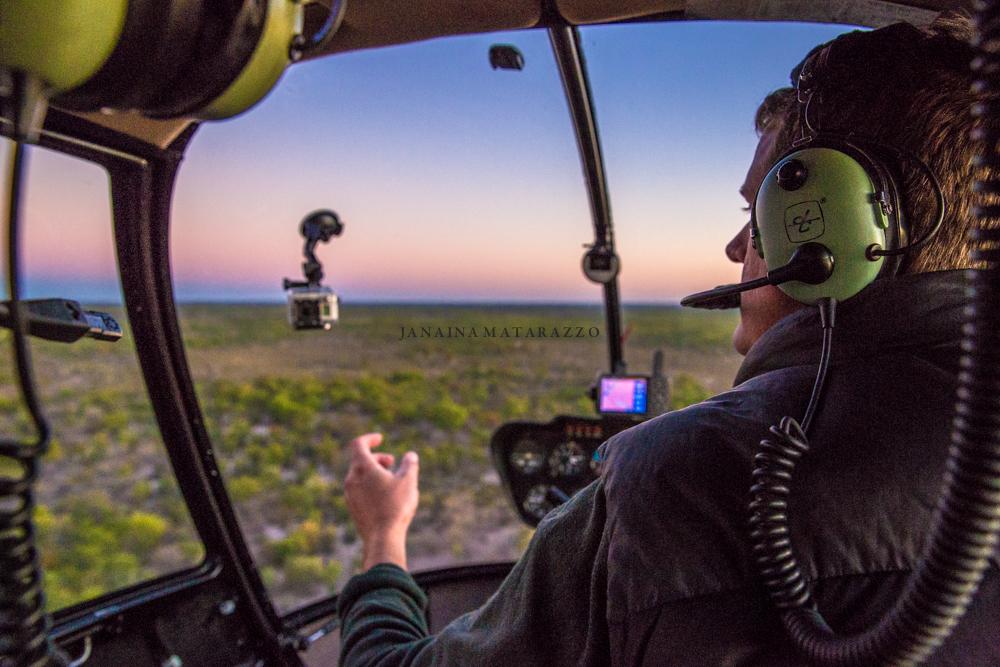 JMP_6272_helicopter.jpg