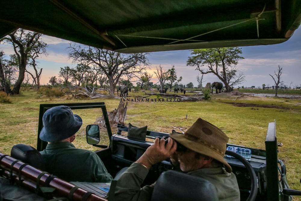 JMP_0225_safariadventure.jpg