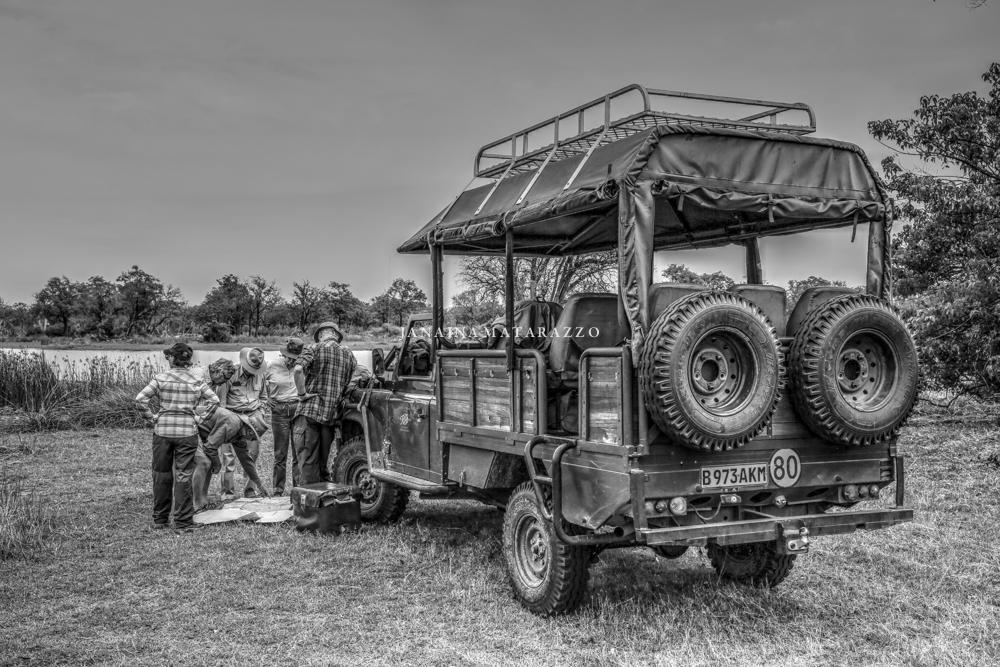 JMP_9687_safariadventure.jpg