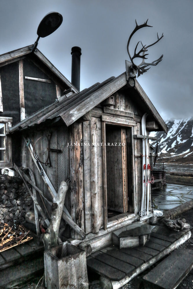 JMP_3780_arctic.jpg