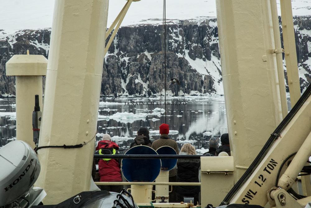 JMP_2287_arctic.jpg