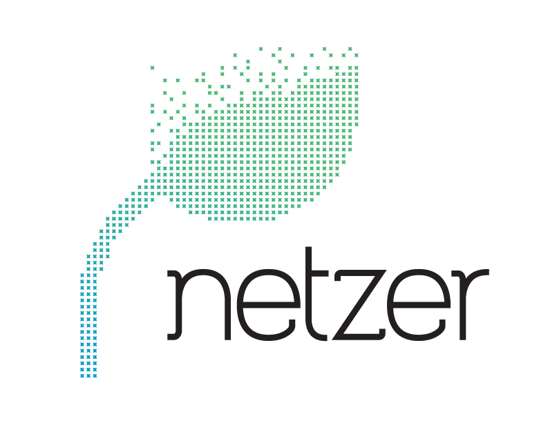 Image result for netzer church