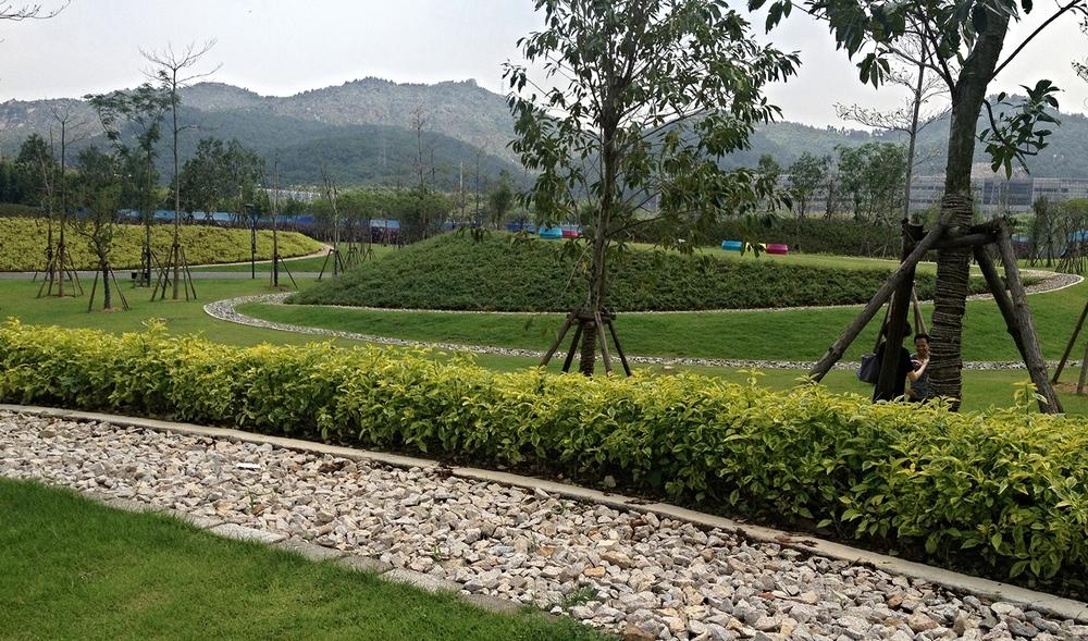 Xiamen3.jpg