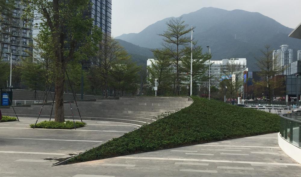ShenzhenOneCity9.jpg
