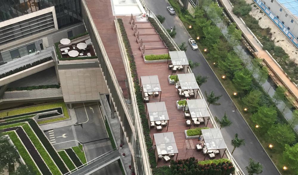ShenzhenBay7.jpg