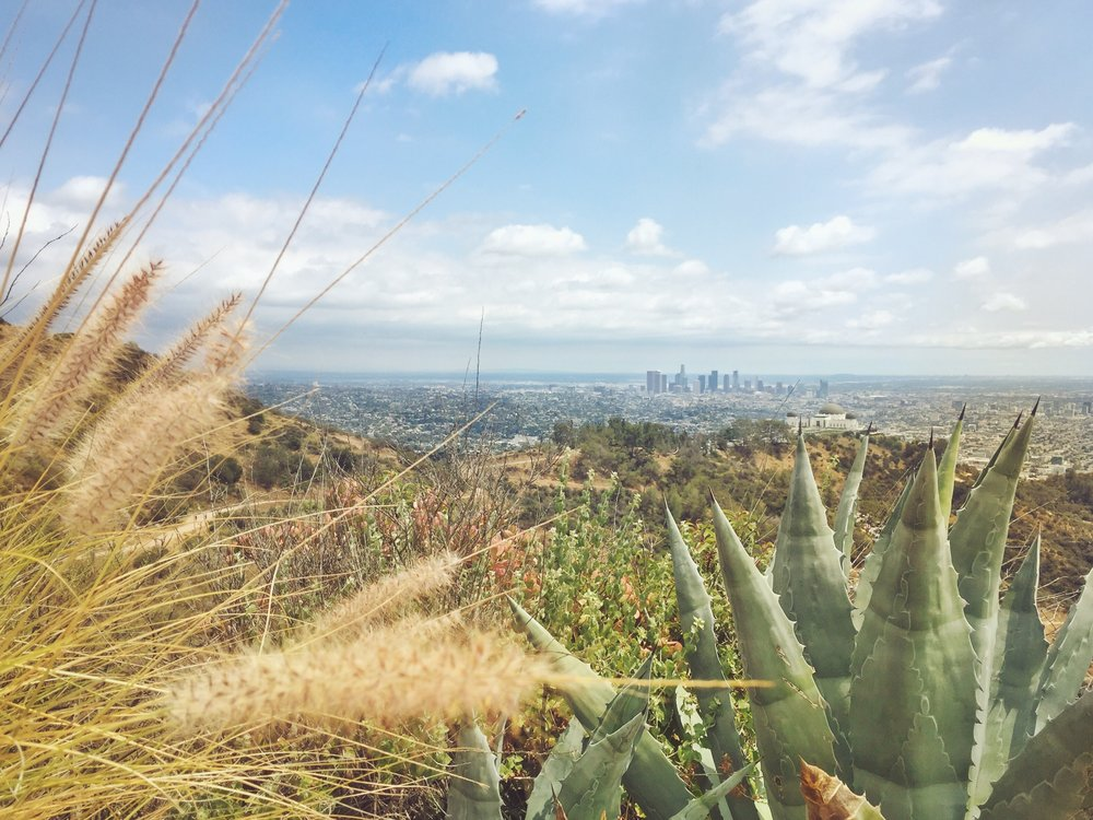 Photography Tour Los Angeles