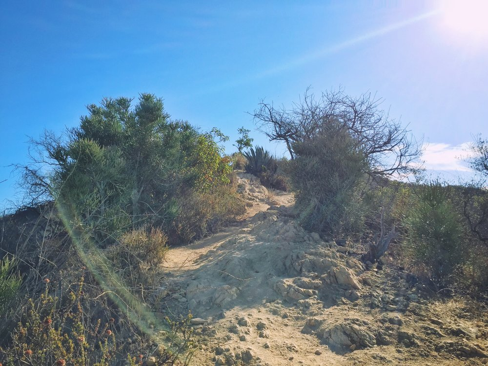 Hiking Guide Los Angeles