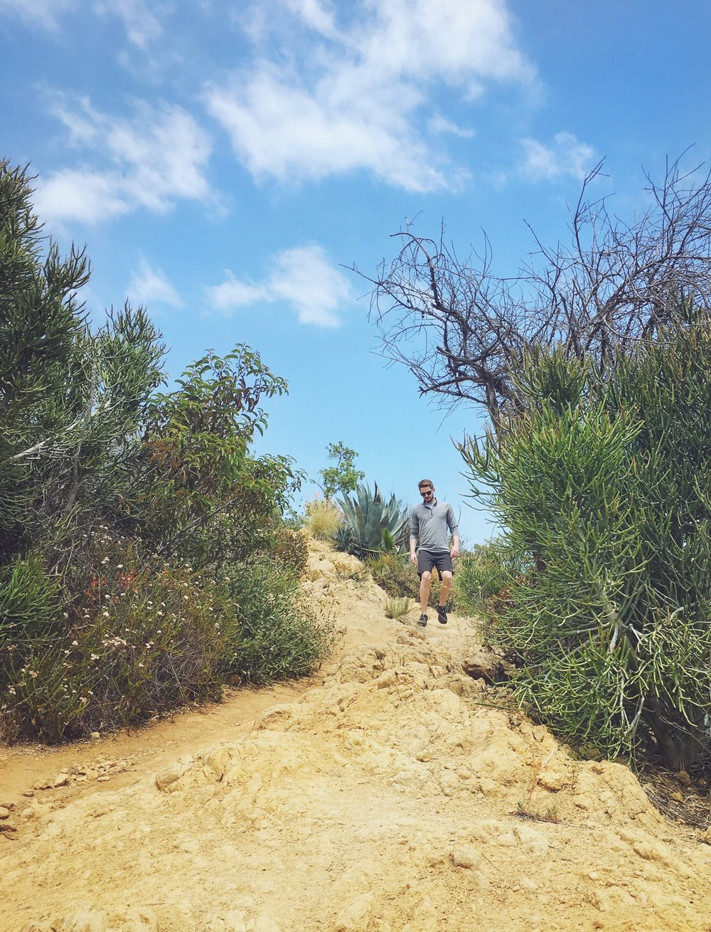 LA Hiking Tours Griffith Park