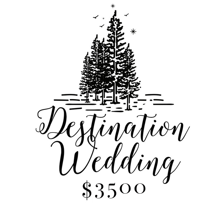 All Travel Included // 8 Hours Coverage // Ceremony & Reception - Portraits - First Look - Details - 2 Professional Photographers