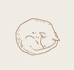 Cat 2.png
