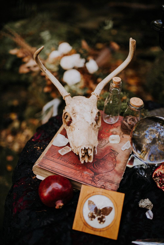 Spooky 2018-1-14.jpg