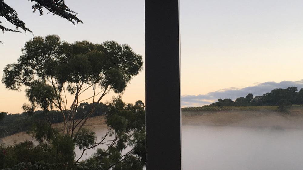 split-mist-scene_crop.jpg