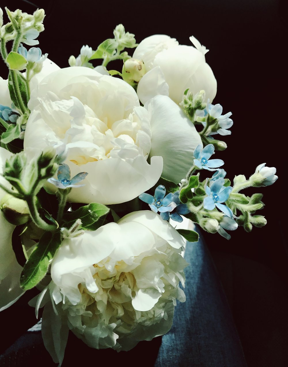 White peony and blue tweedia mason jar flower arrangement – Roots and Wildflowers
