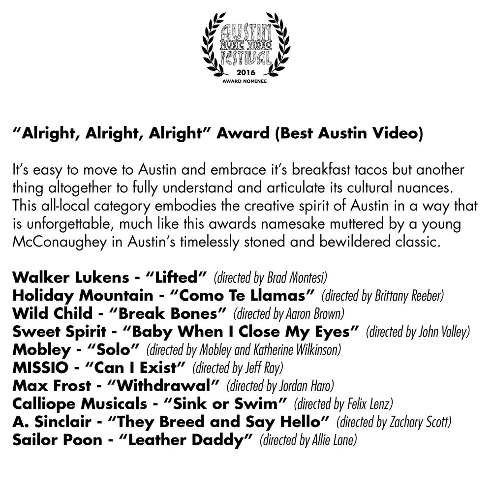 AMVF 2016 Categories Square.jpg