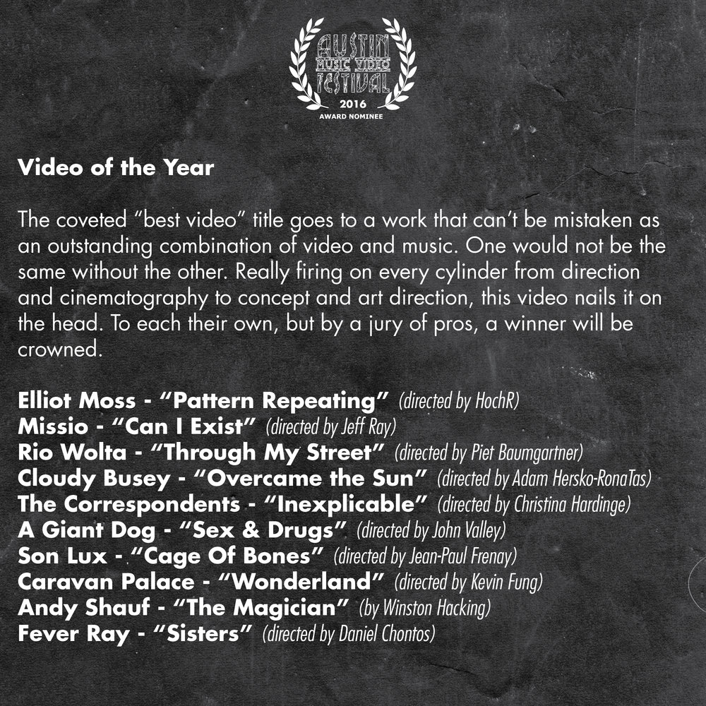 AMVF 2016 Categories Square4.jpg