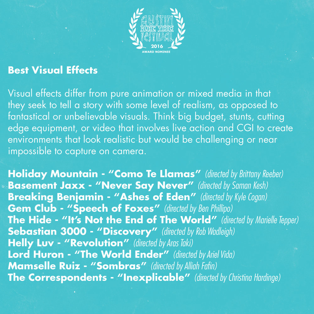 AMVF 2016 Categories Square14.jpg