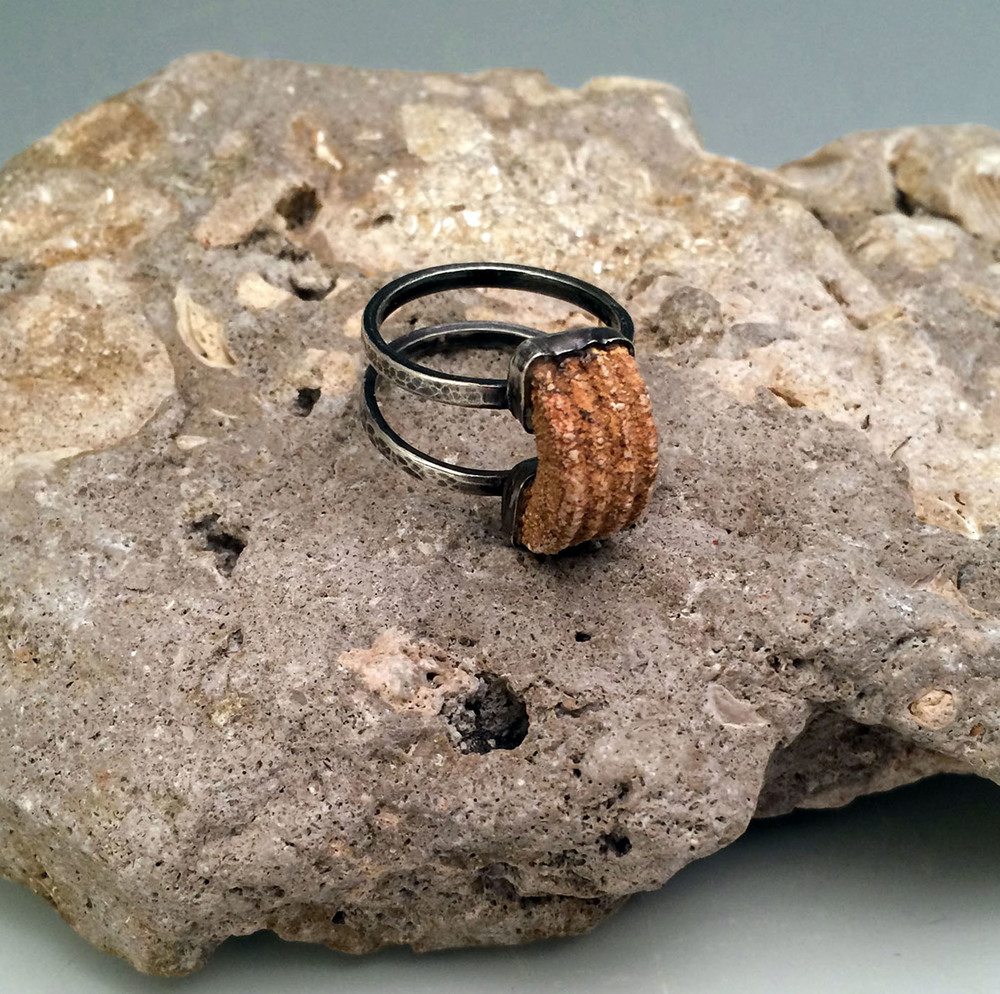 sterling silver double band ring with petrified fish spine