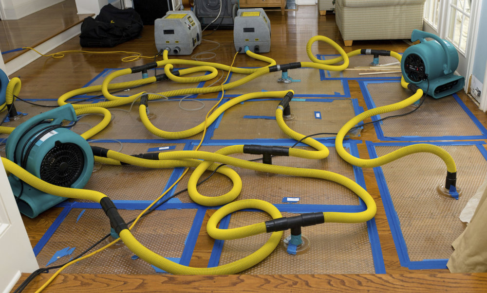 how to deal with odors after a flood servicemaster of calgary rh smcalgary com Stuff That Smells Good Smells Good and Bad